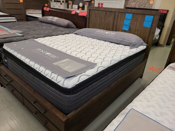 Sealy Performance Evanston Plush Pillow Top Twin Mattress